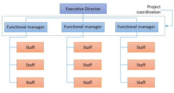functional-org-structure
