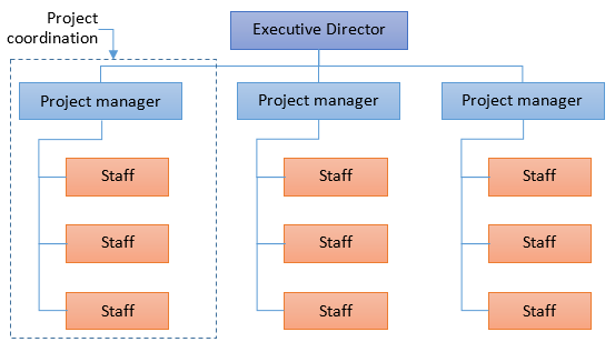 projectized-org-structure